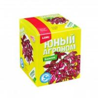 """Юный агроном """"Базилик"""""""